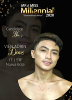Pageantvote   official candidate male